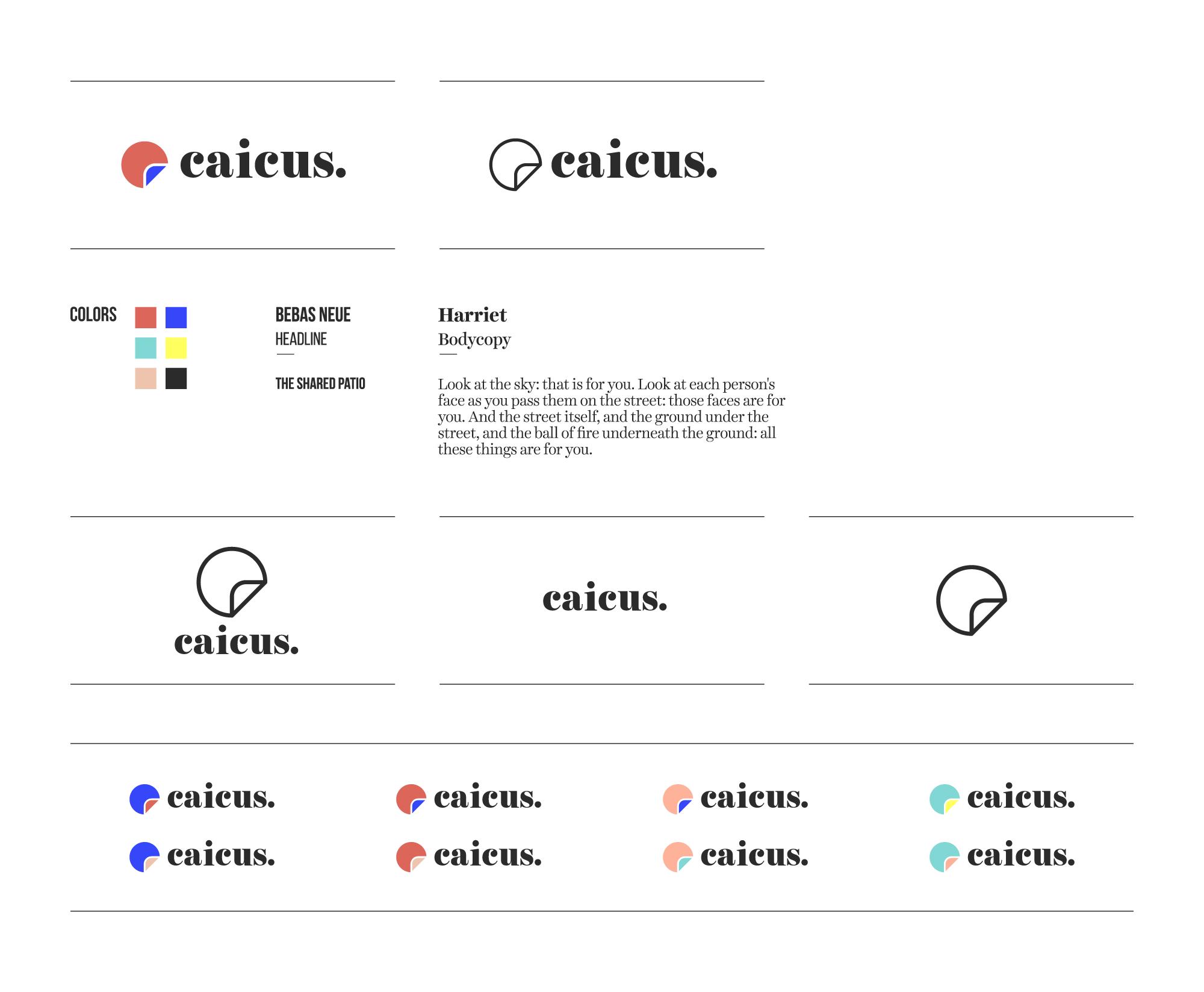 caicus_logotypecolor